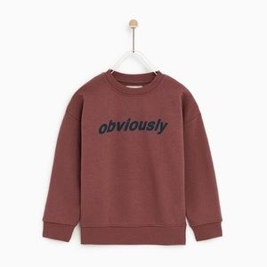 🆕 Zara Rust Hipster Obviously Pullover Sweatshirt